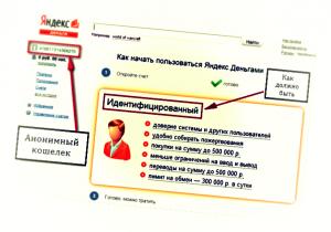 Паспортные данные для Яндекс.Денег