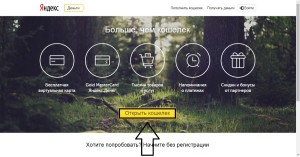 Вебсайт электронных денег